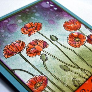 PleasantPoppies061914b