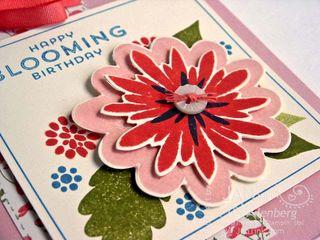 FlowerPatch071215a