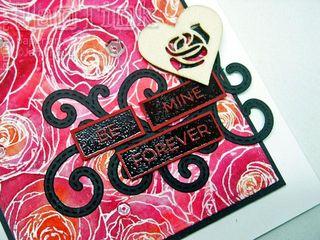RosesAllOver020916e