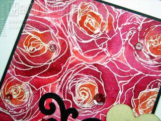 RosesAllOver020916d